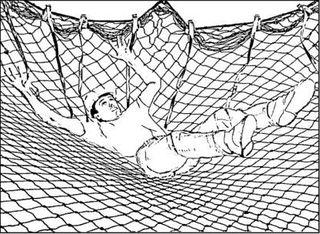 Защитно-улавливающая сетка
